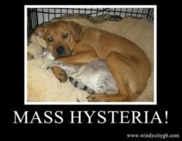 ghostbusters 4 mass hysteria cats and dogs.jpg