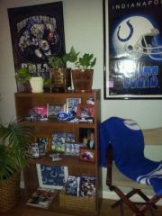 THE ONLY GOOD STUFF IS COLTS STUFF 014